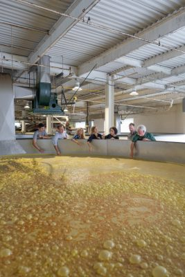Download Group tour sees milled grains in cooker