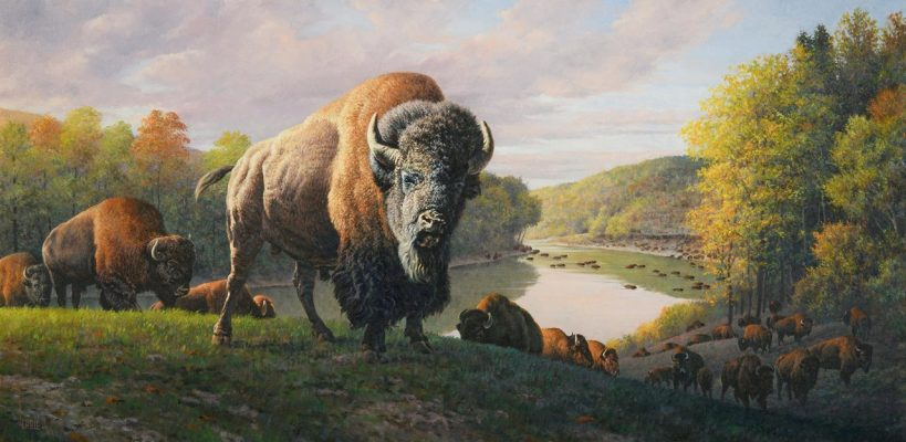 Download Buffalo artistic rendering